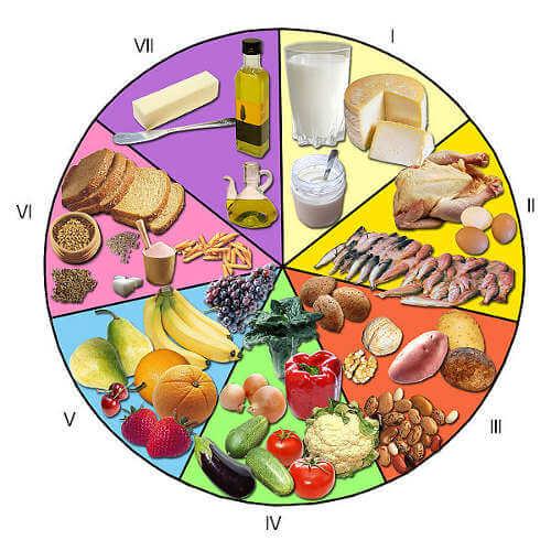 La alimentación debe aportar todos los nutrientes necesarios para que el organismo pueda realizar todas sus funciones vitales.