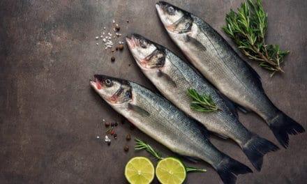 Cocinar con lubina: 5 ideas fáciles y rápidas