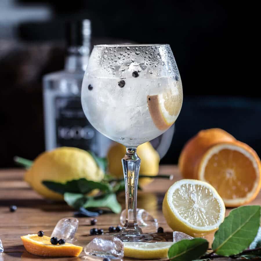 gin tonic clasico con botánicos