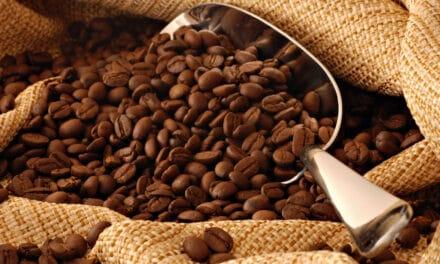 ¿Qué es el café de especialidad? Claves para diferenciarlo del café comercial