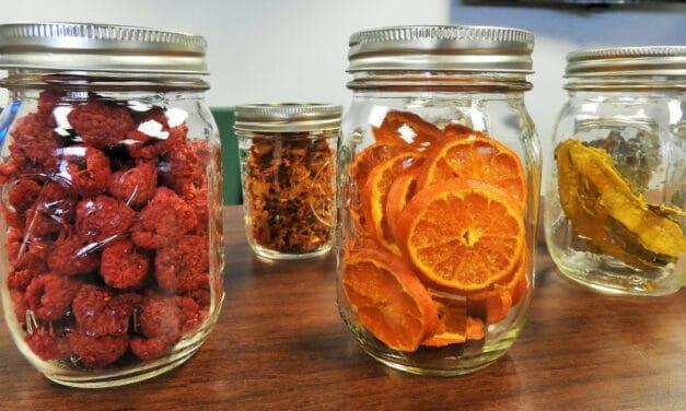 Descubre los beneficios de tener un deshidratador de alimentos en tu cocina