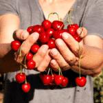 ¿Qué frutas de temporada hay en mayo?