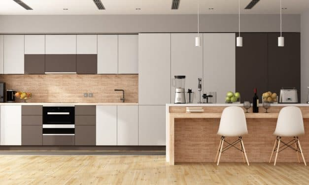8 pequeños electrodomésticos necesarios que no pueden faltar en tu cocina