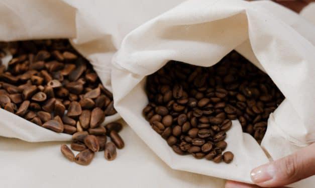 Café arábica y café robusta: parecidos pero diferentes